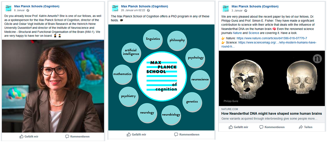 Max Planck School of Cognition